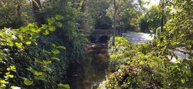 Marsange-pont